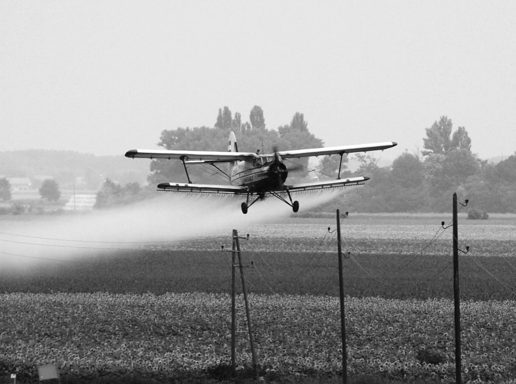 Antonov An-2 Air-Tractor 9A-DIZ Croatia-In Flight 2003